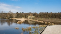 Dwingelderveld-18-4-2021-11-39-33