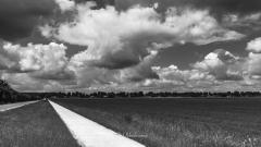 Landschap-Valthe-20-6-2020-10-22-57