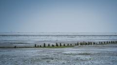 Moddegat-Friesland-21