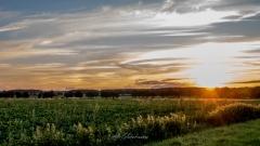 zonsondergang-1